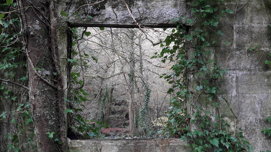 Explore Kennall Vale and discover Cornwall's history