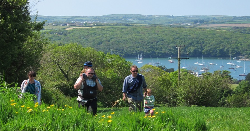 Spring walks in Cornwall are a great way to explore the county's hidden delights