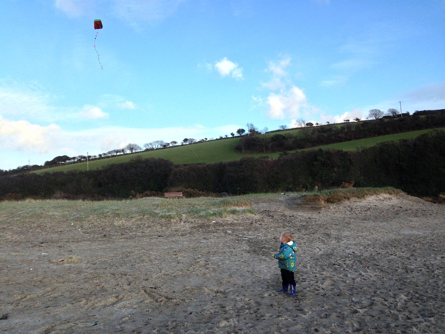 Kite flying is a fun activity for the beach