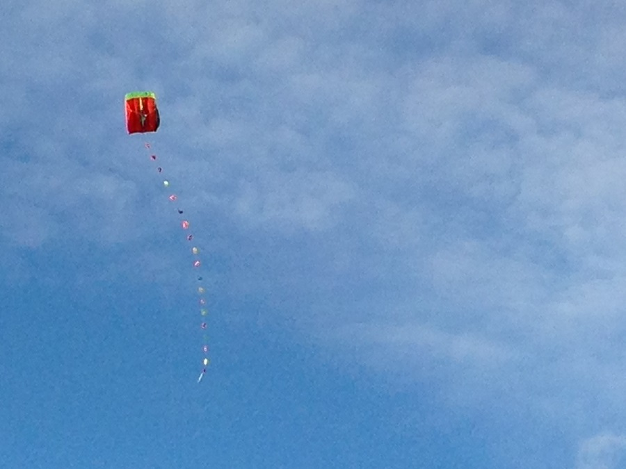 Kite flying in Cornwall is a fun activity for families