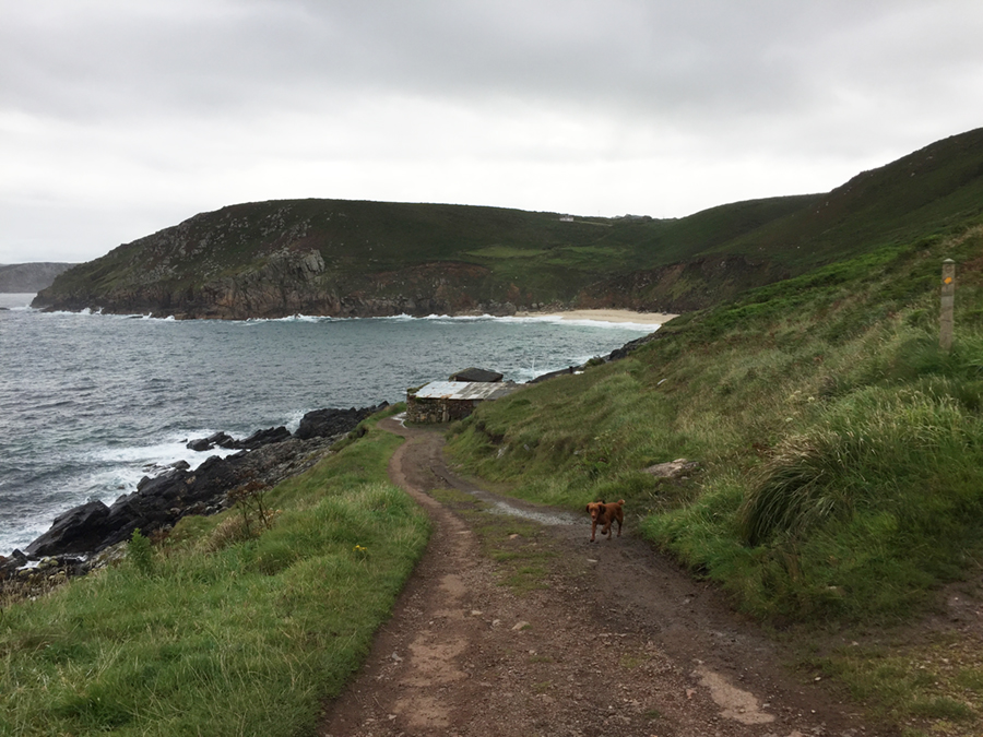 Coast path near Pendeen