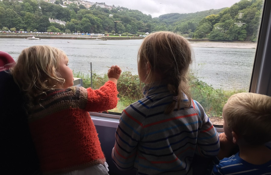 Spotting wildlife is one of the delights of a trip on the Looe Valley Line