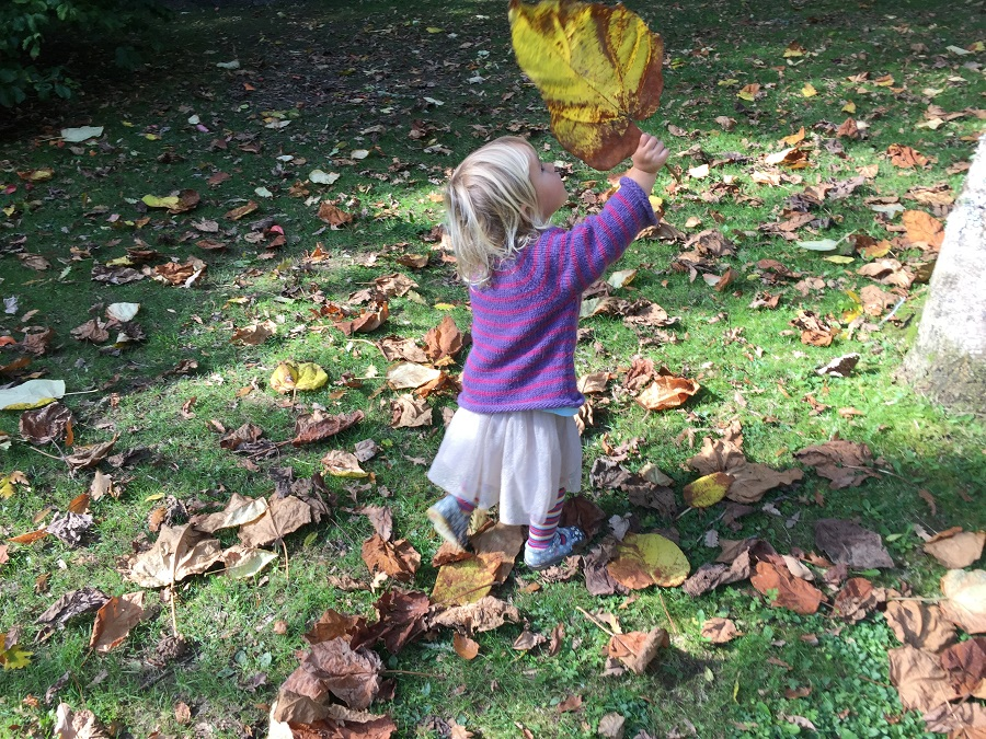 Pinetum Gardens is ideal for an autumn adventure with a toddler