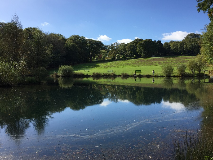 The lake at Pinetum Gardens adds to the tranquil setting