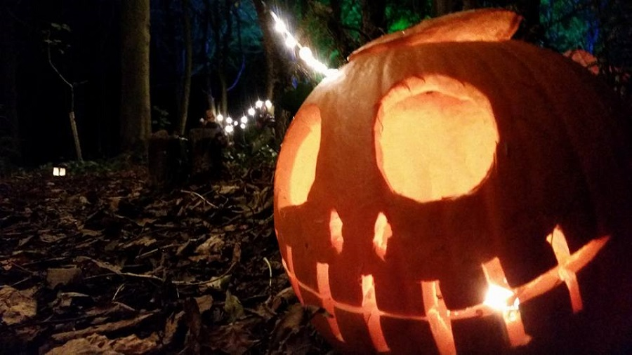 Enjoy spooky family Halloween activities in Cornwall