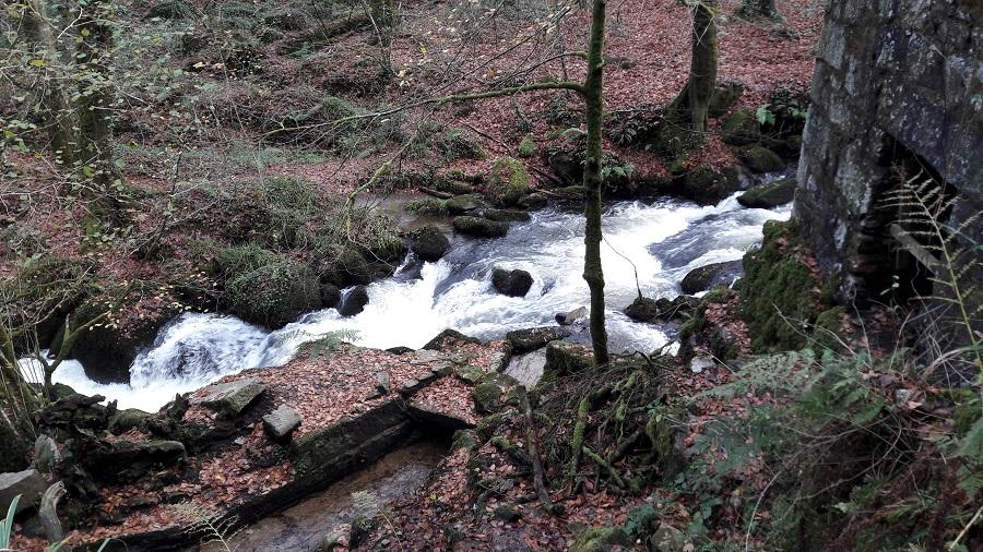 Water is everywhere in Kennall Vale