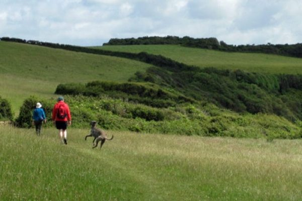 Rosemullion Head on the Helfold is popular with walkers