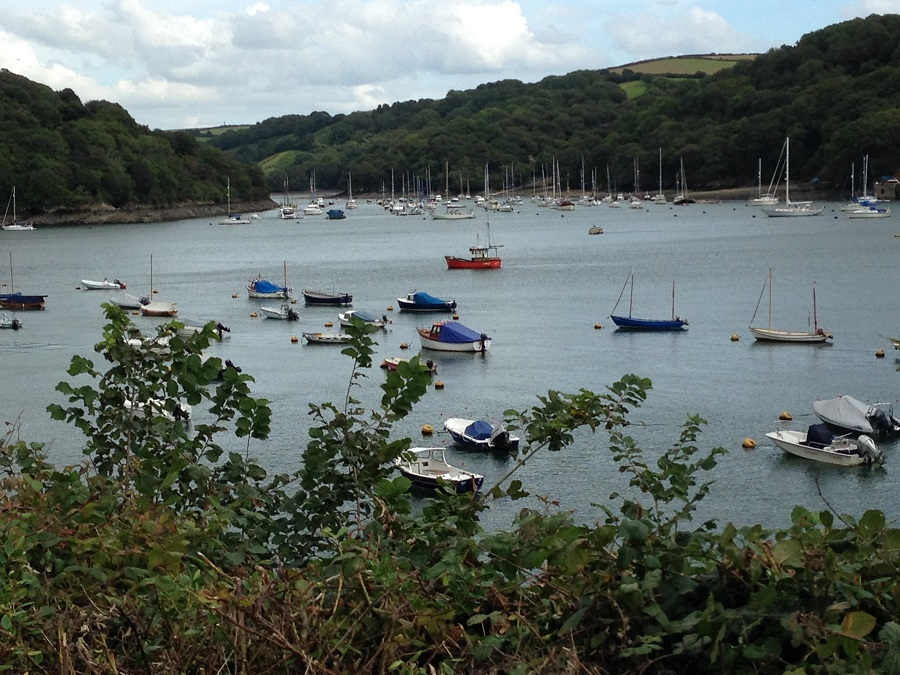 Explore Daphne du Maurier's Cornwall and enjoy beautiful views of the Fowey River