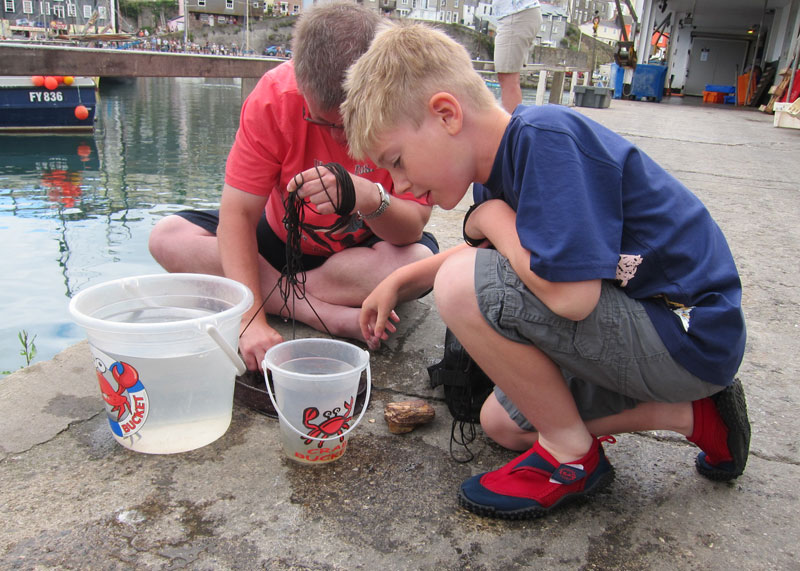 Crabbing at Mevagissey