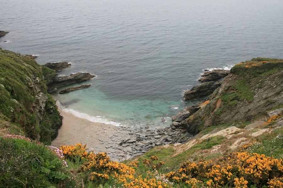 Discover pretty coves on the Roseland Peninsula