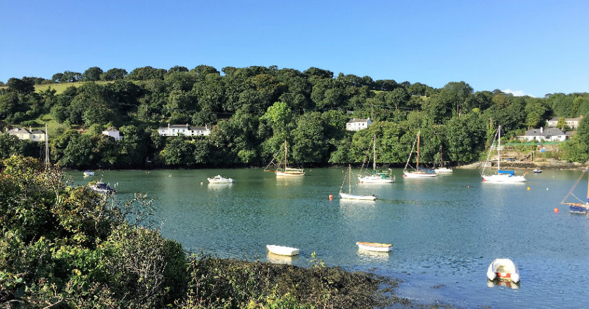View on the Fal River Walk 2016