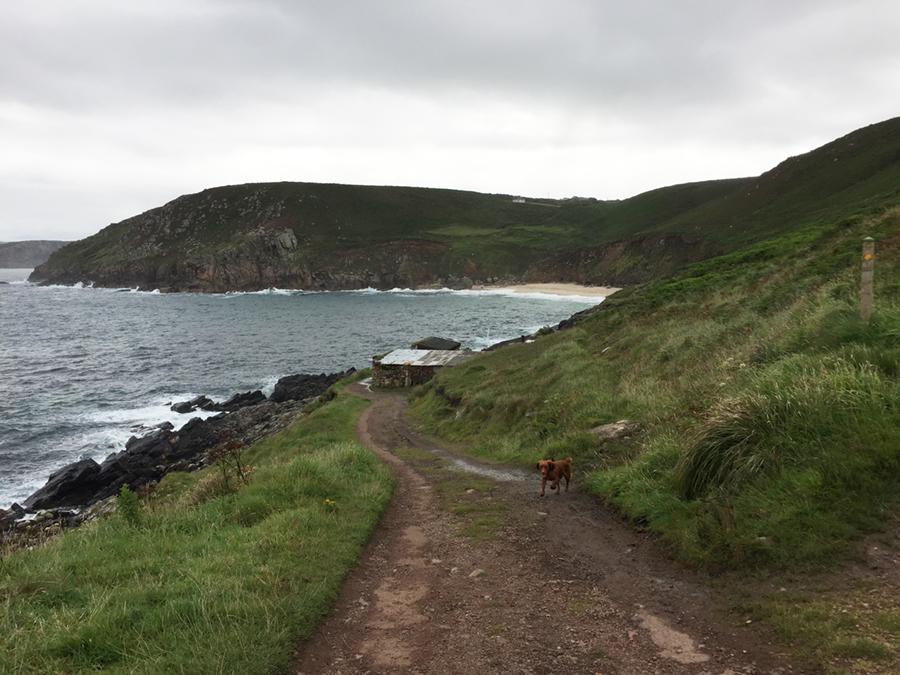 Coast path near Pendeen