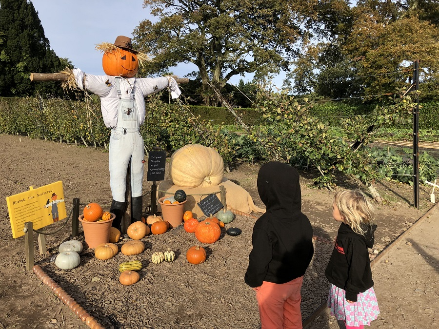 Heligan's Halloween Trail is a fun half term activity for children