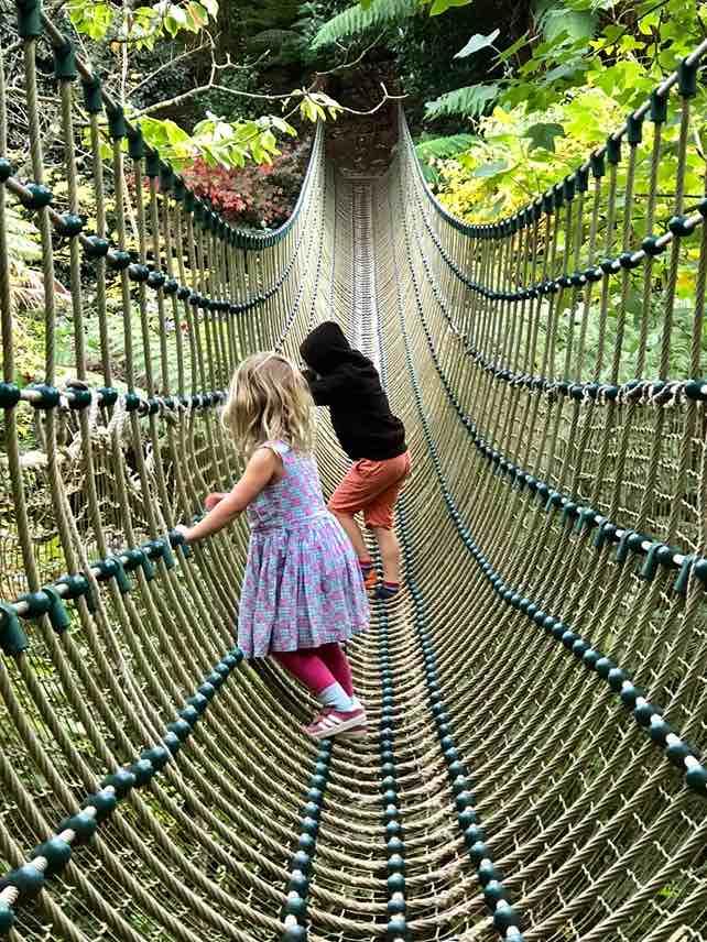 Heligan rope bridge